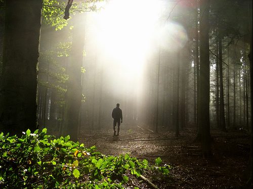 Meditations on Psalm 23 & 1 John 1:7 – Walking in the light