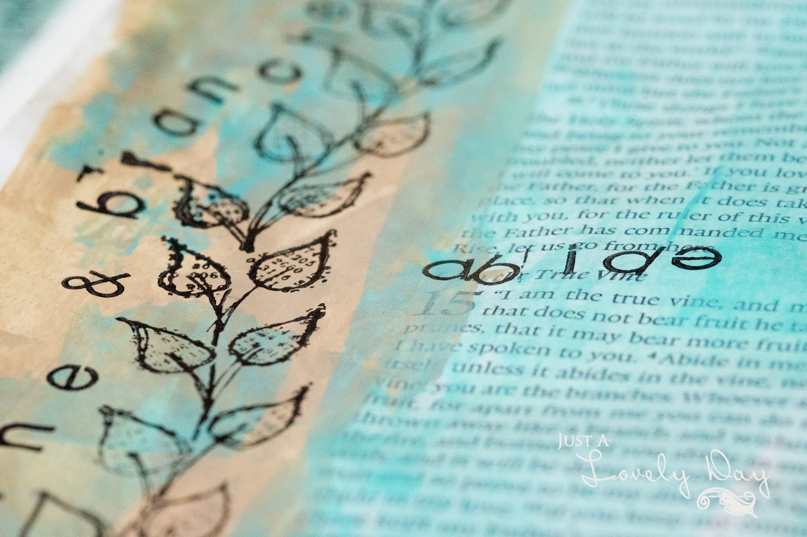Reflections on tenacious love plus relationship as vine & branches – themes from 1 John 4 and John 15.