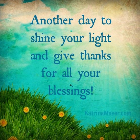 Nov 1 Gratitude: Intro & First Reflection